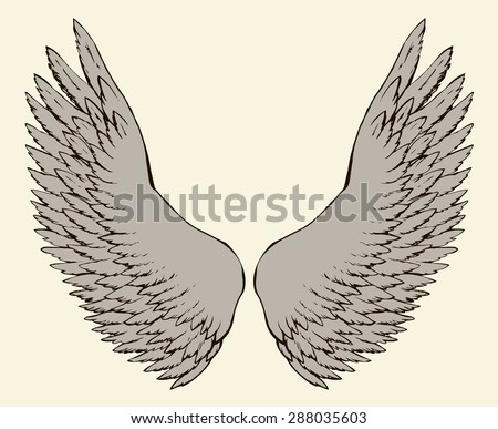 Two outspread large soft wings with long fluffy glide plume. Vector monochrome freehand black ink drawn background sketchy in art scribble ancient style pen on paper with space for text on sky - stock vector