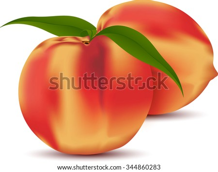 Two peach fruits with leaves.  peach with leaf illustrator design. peach single. peach sweet food. peach fresh juice.apple health and nature perfect. peach with leaf design. peach object vector - stock vector