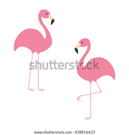 Two pink flamingo set. Exotic tropical bird. Zoo animal collection. Cute cartoon character. Decoration element. Flat design. White background. Isolated. Vector illustration  - stock vector