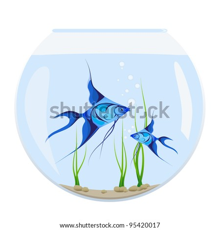 Two Tropical Fishes In Aquarium - stock vector