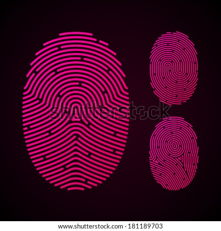 Types of fingerprint patterns. Vector.  - stock vector