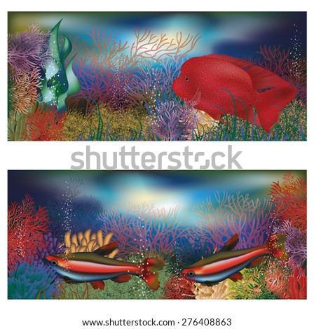 Underwater banners with red tropical fish, vector illustration - stock vector