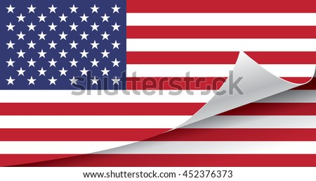 United States of America flag vector illustration. - stock vector