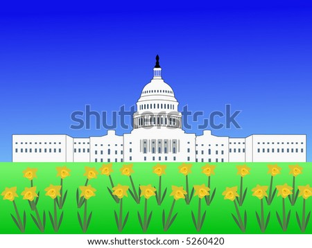 US capitol building Washington DC in spring with daffodils - stock vector