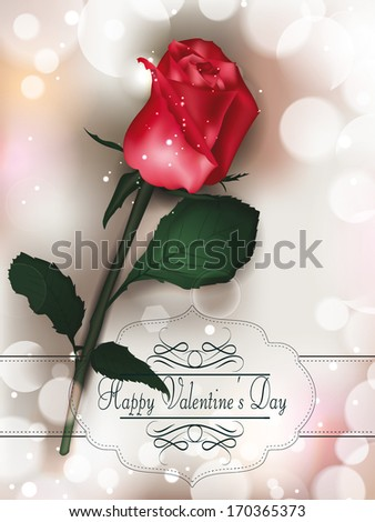 Valentine's Day greeting card with red rose on the beige background - stock vector