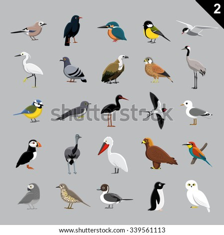 Various Birds Cartoon Vector Illustration 2 - stock vector