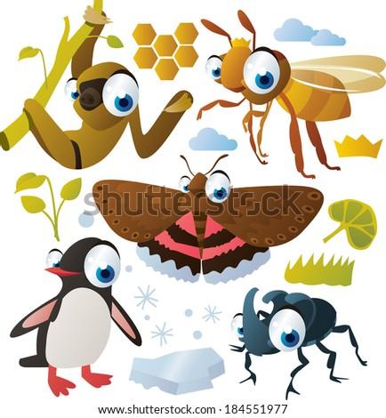 vector animal set: sloth, moth, bee, penguin, beetle - stock vector