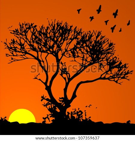 Vector background: african sunset - stock vector