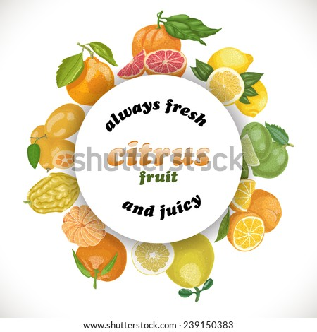 Vector background with citrus fruits in a circle and the words - stock vector