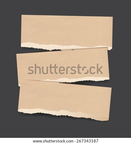 Vector backgrounds set as torn realistic paper banners of brown parchment cardboard - stock vector