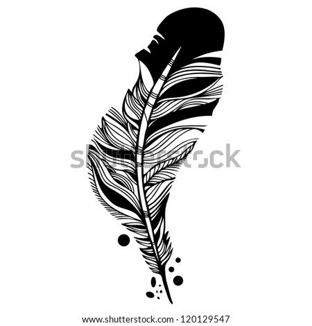 Vector  beautiful  crow's feather. - stock vector