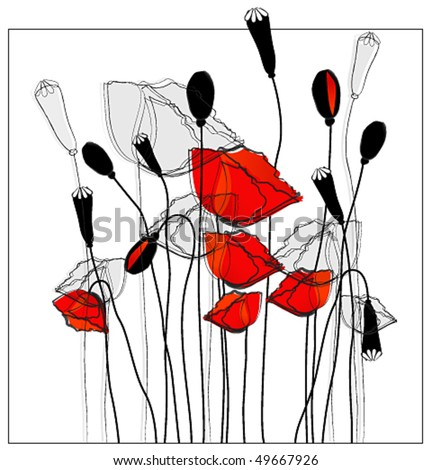 Vector beautiful poppies - stock vector