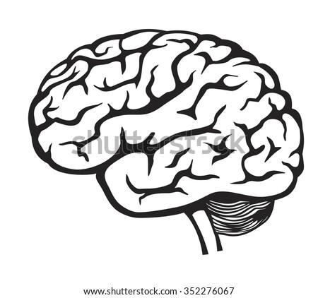vector black Brain icon on white background - stock vector