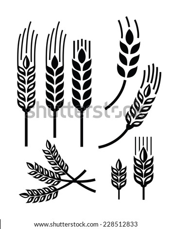 vector black illustration of wheat icon on white - stock vector