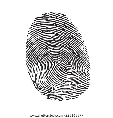 Vector black isolated fingerprint on white background - stock vector