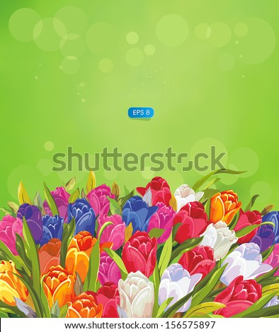Vector Bouquet of tulips against a green background - stock vector