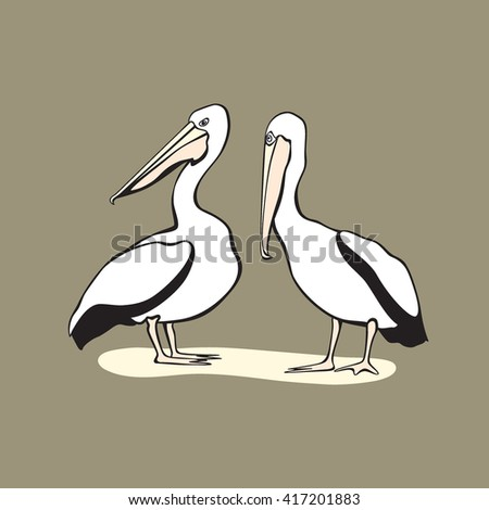 Vector card with hand drawn pelicans looking in one direction. Cute characters, beautiful design elements. - stock vector