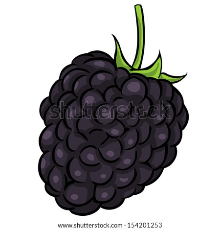 blackberryflavor stock photos images amp pictures