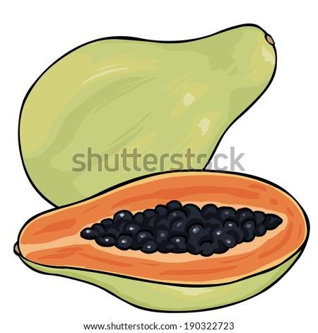 Vector Cartoon Papaya - stock vector
