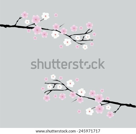 vector cherry blossom branches with space for text - stock vector