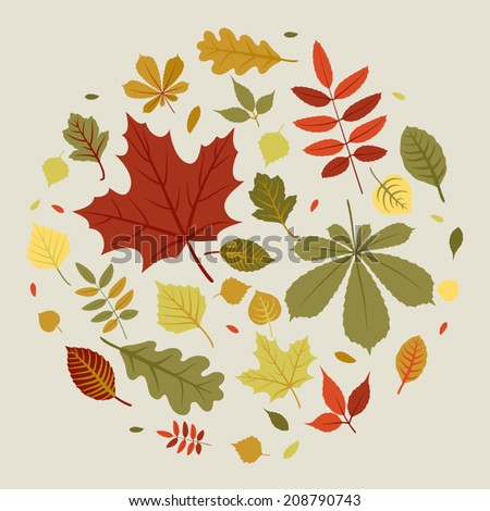 Vector circle composition of autumn leaves | Fall leaves composed into circle - stock vector