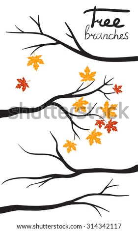 Vector Collection of autumn Tree Branch Silhouettes  - stock vector