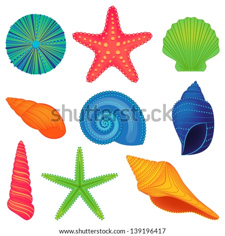Vector Collection of Colorful Shells - stock vector