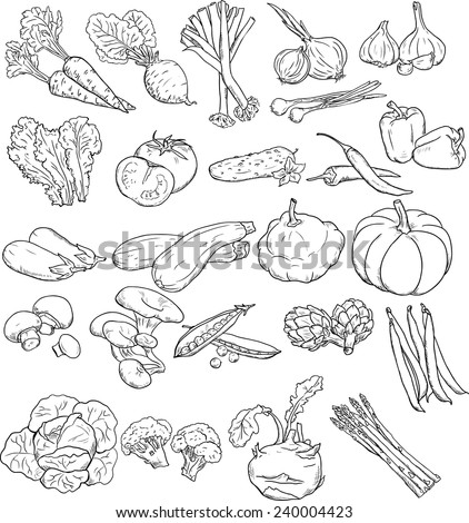 vector collection of vegetables/vegetables - stock vector