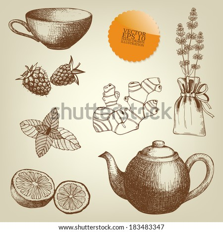 Vector collection of vintage hand drawn tea time and spices illustrations. - stock vector