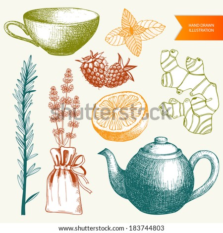 Vector collection of vintage hand drawn tea time, spices and herbs ink illustrations. - stock vector