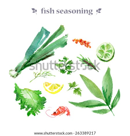 Vector collection of watercolor herbs on white background. - stock vector