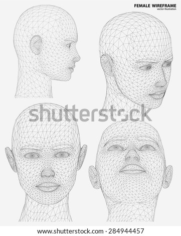 Vector concept or conceptual 3D wire frame human female head isolated on white background - stock vector
