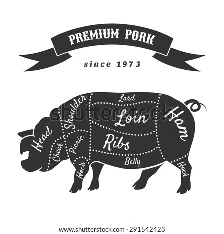 Vector cuts of pork or butcher cuts scheme of pig. Food steak, belly and shoulder, hog and swine, bacon and butchery - stock vector