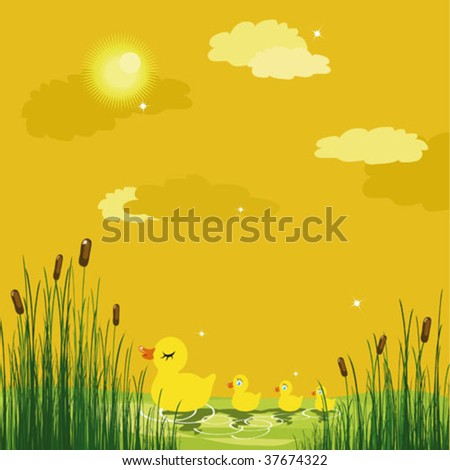 Vector drawing  Ducks in a pond - stock vector