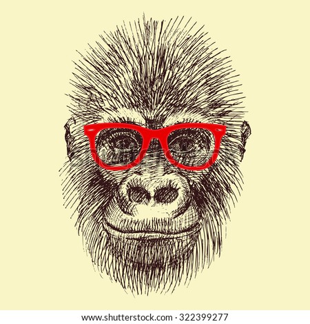 vector drawing handmade face orangutan, monkey wearing glasses, fashionable funny monkey - stock vector