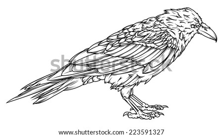 Vector drawing of a /Raven outline/ Easy to edit vector file, color version available in portfolio - stock vector