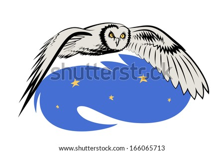 Vector drawing of eagle owl. Eagle owl flies in the night sky. - stock vector