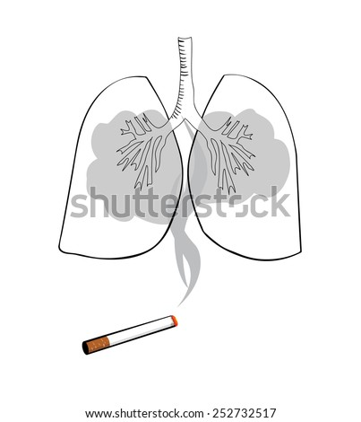 Vector drawing of lungs and smoke from a cigarette - stock vector