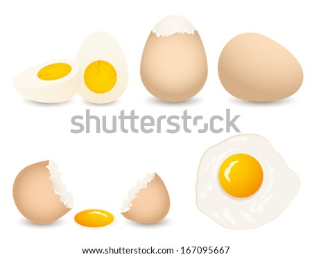 vector  egg collection isolated on white background - stock vector