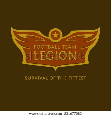 Vector emblem for the football team. Heraldic logo with wings, star and ball. - stock vector