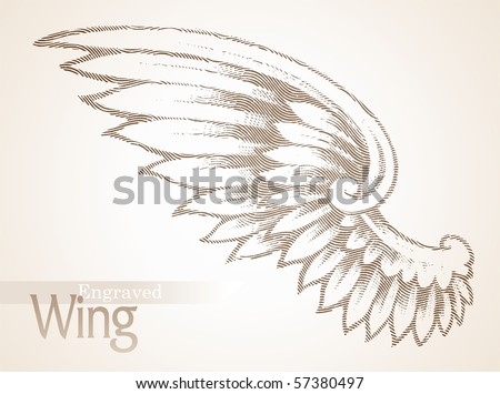Vector engraved ornate wing - stock vector