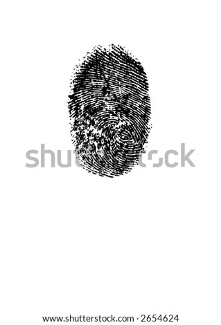 Vector EPS Smudged ink fingerprint or thumbprint on white background. Unique patterns and swirl - stock vector