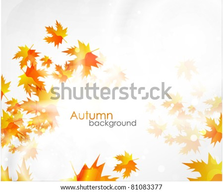 Vector fall background. Orange leaves - stock vector