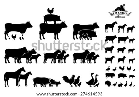 Vector Farm Animals Collection Isolated on White - stock vector