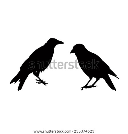vector file of crow silhouette - stock vector