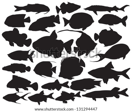 Vector fish silhouettes - stock vector