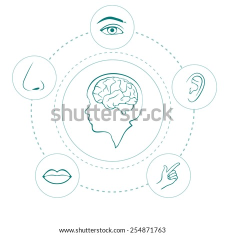 vector five senses icons, human nose, ear, eye and mouth illustration - stock vector