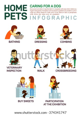 Vector flat illustration infographic of caring about pets dog. Bathing, washing, dressing, combing, veterinary inspection, going for a walk, crossbreeding, buying food, participation in an exhibition. - stock vector