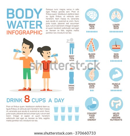 Vector flat style of body water infographic concept. Concept of drinking water, healthy lifestyle. Bottle brain body lungs bones blood skin muscle stomach. - stock vector