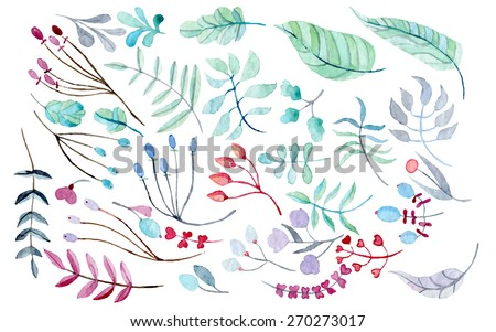 Vector floral set. watercolor 32 brunches and leaves hand drawn and vectorized, eps10 - stock vector